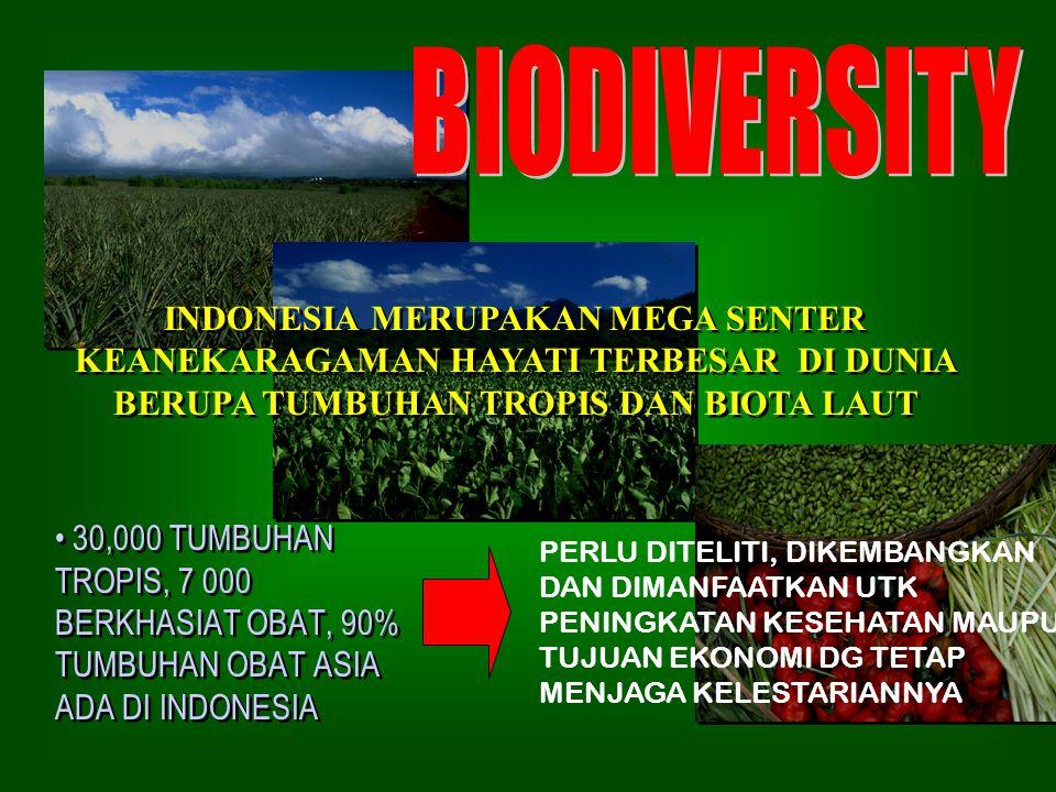 BIODIVERSITY INDONESIA MERUPAKAN MEGA SENTER KEANEKARAGAMAN HAYATI TERBESAR DI DUNIA BERUPA TUMBUHAN TROPIS DAN BIOTA LAUT.