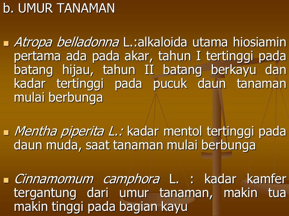 b. UMUR TANAMAN