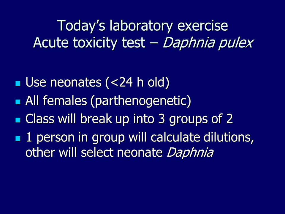 Today's laboratory exercise Acute toxicity test – Daphnia pulex