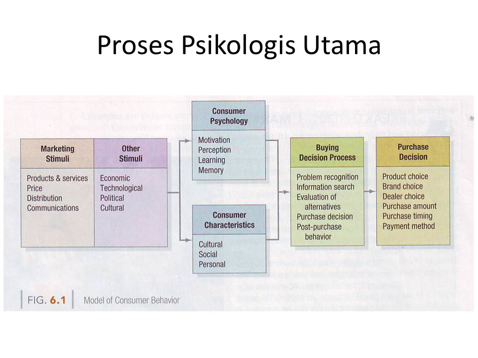 Proses Psikologis Utama
