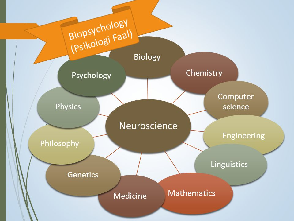 Biopsychology (Psikologi Faal)