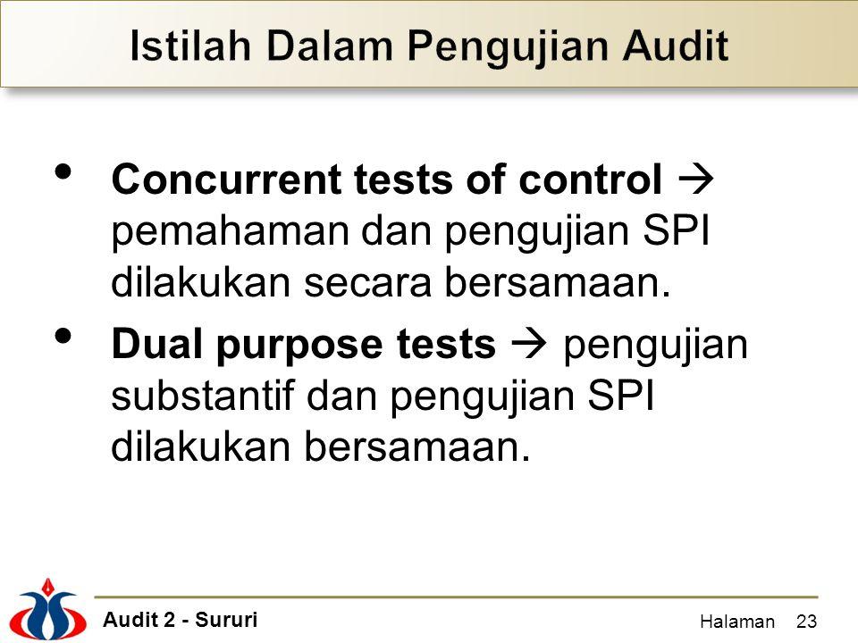 Istilah Dalam Pengujian Audit