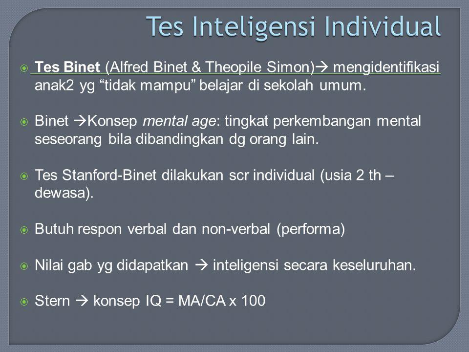 Tes Inteligensi Individual