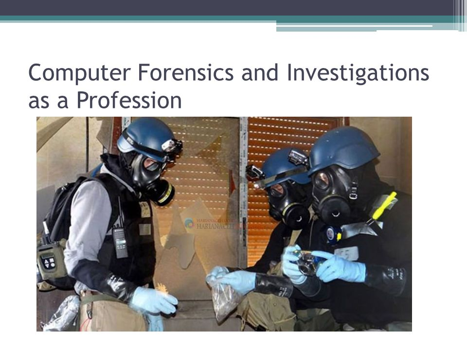 Computer Forensics and Investigations as a Profession