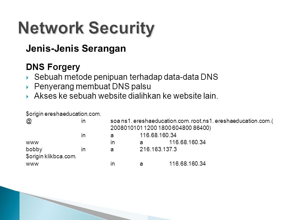 Network Security Jenis-Jenis Serangan DNS Forgery