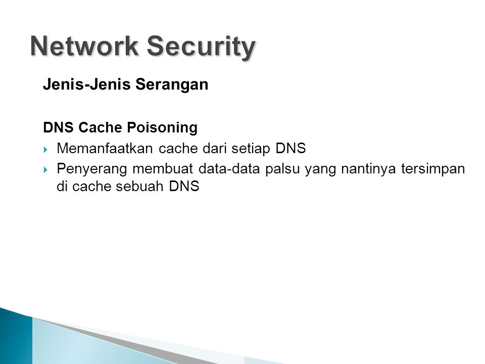 Network Security Jenis-Jenis Serangan DNS Cache Poisoning
