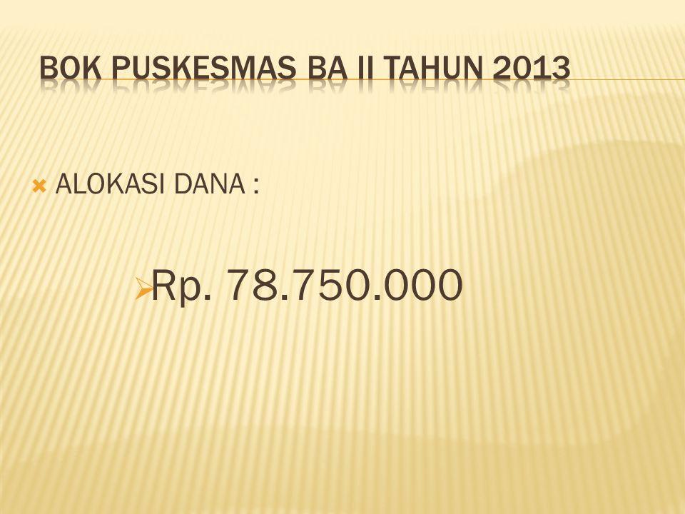 BOK PUSKESMAS BA II TAHUN 2013