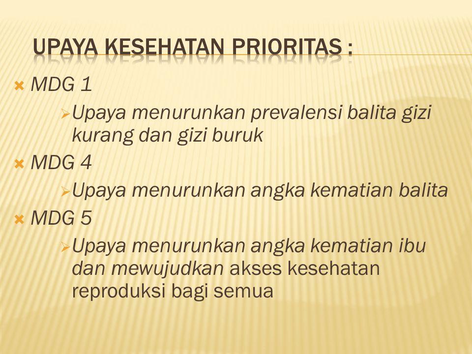 UPAYA KESEHATAN PRIORITAS :