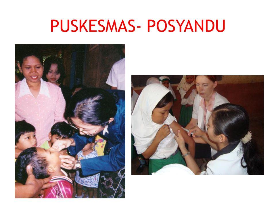 PUSKESMAS- POSYANDU