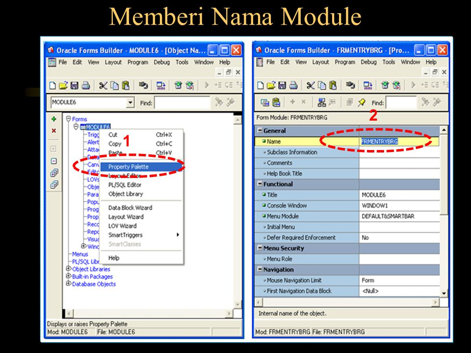 Memberi Nama Module 2 1