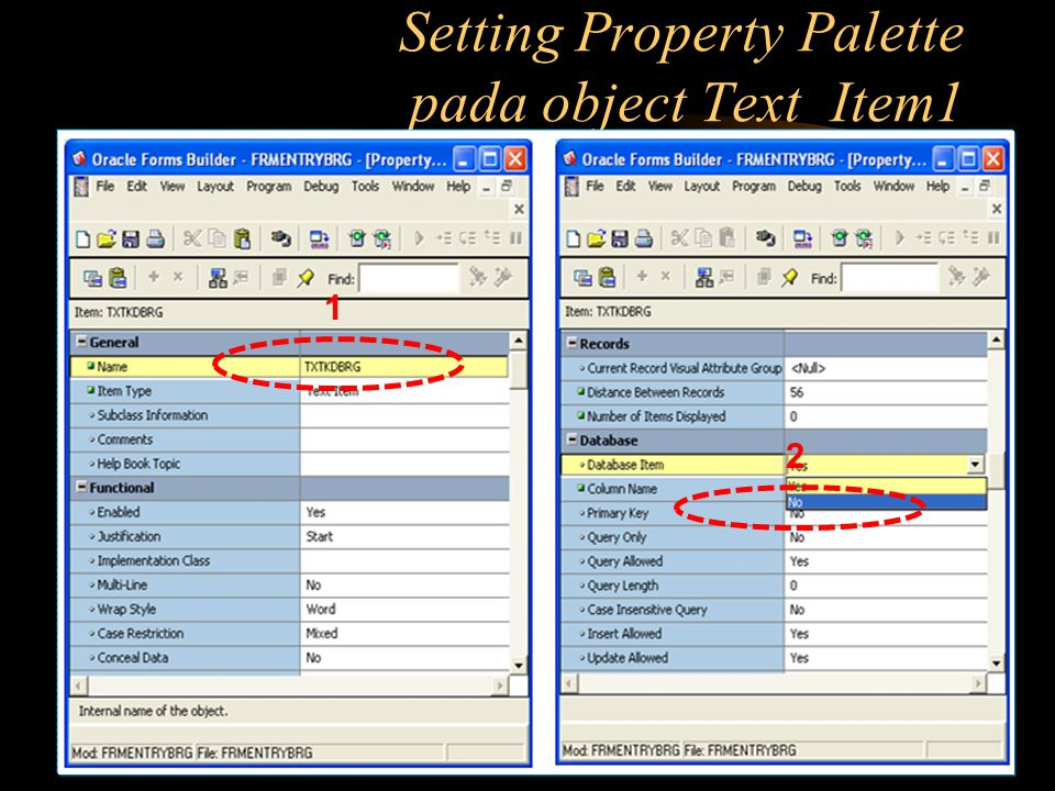 Setting Property Palette pada object Text_Item1
