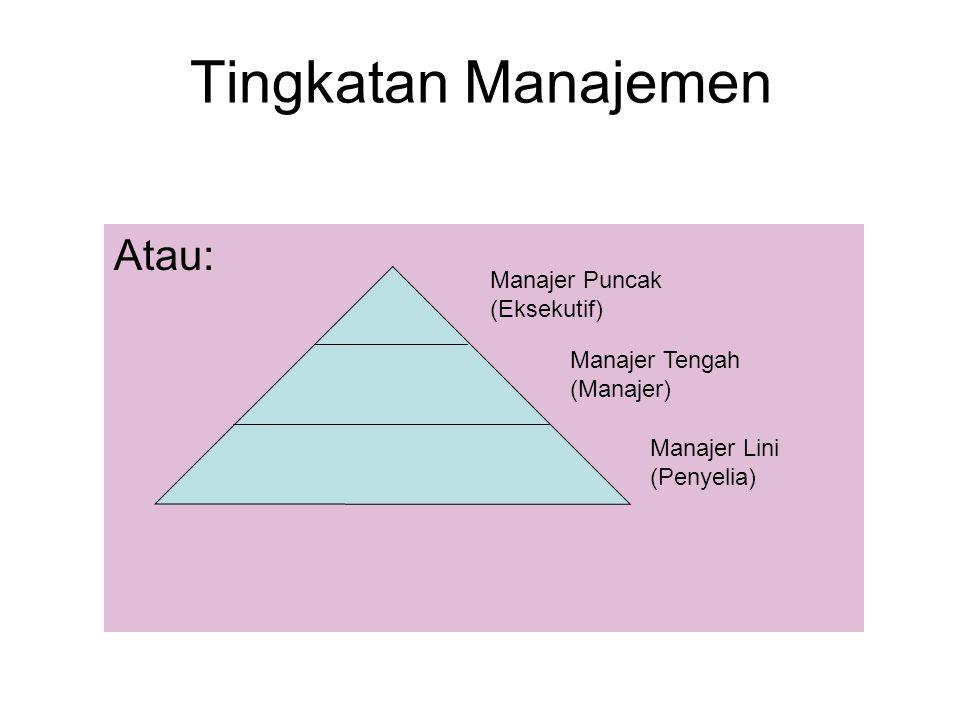 Tingkatan Manajemen Atau: Manajer Puncak (Eksekutif)