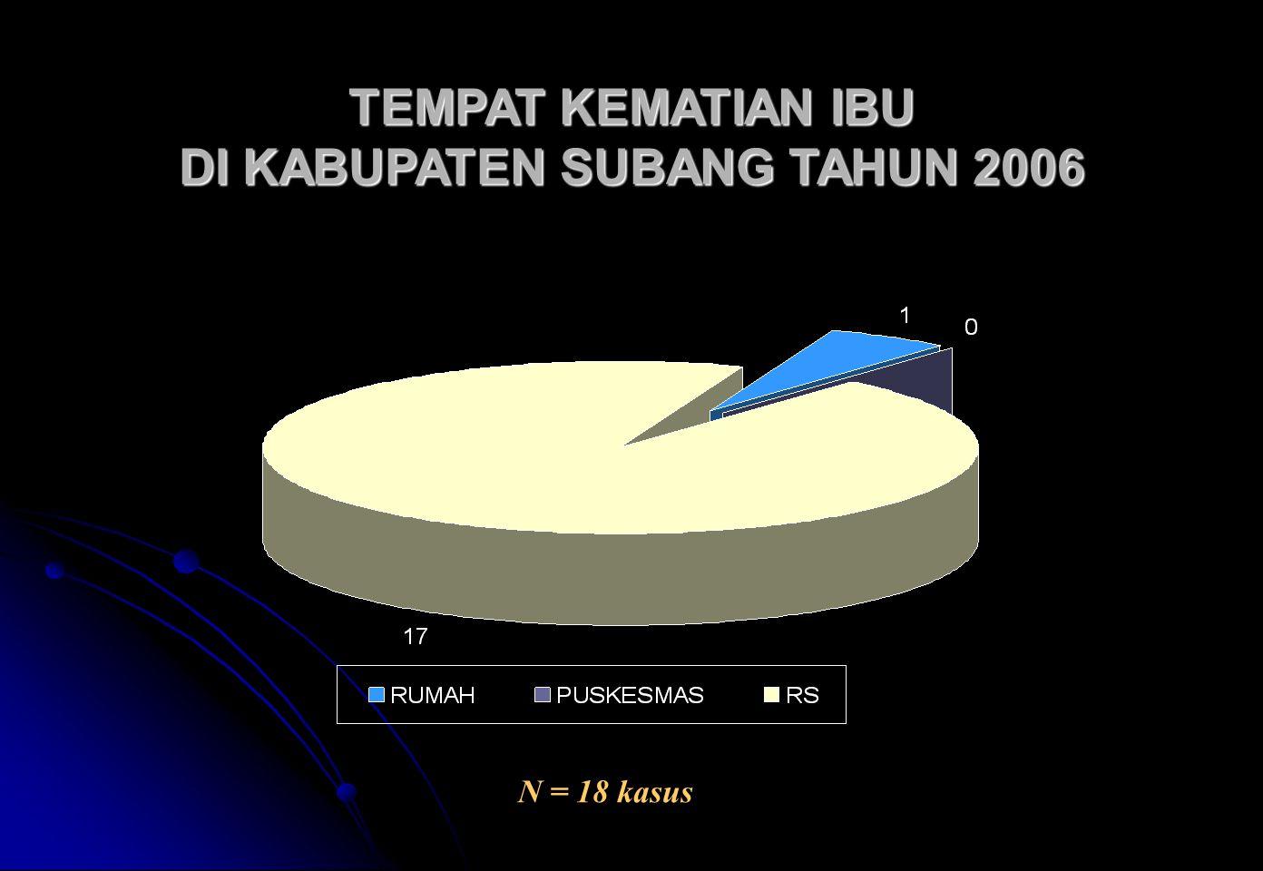 TEMPAT KEMATIAN IBU DI KABUPATEN SUBANG TAHUN 2006