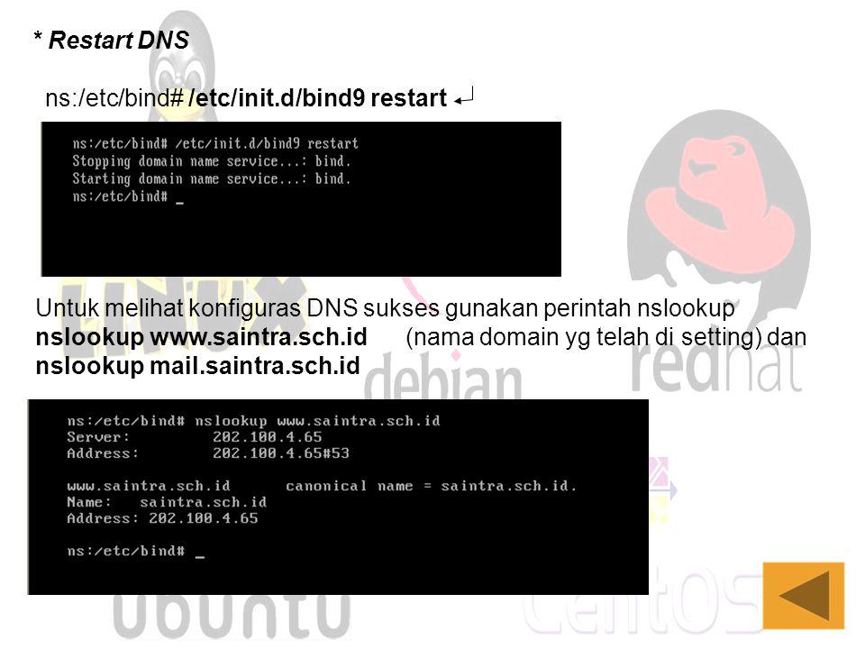 ns:/etc/bind# /etc/init.d/bind9 restart