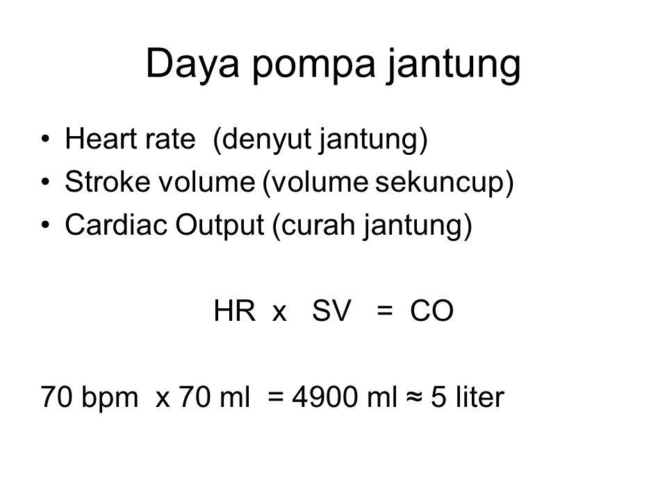 Daya pompa jantung Heart rate (denyut jantung)