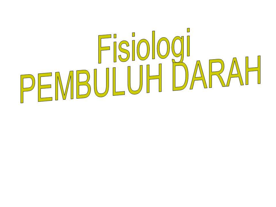 Fisiologi PEMBULUH DARAH