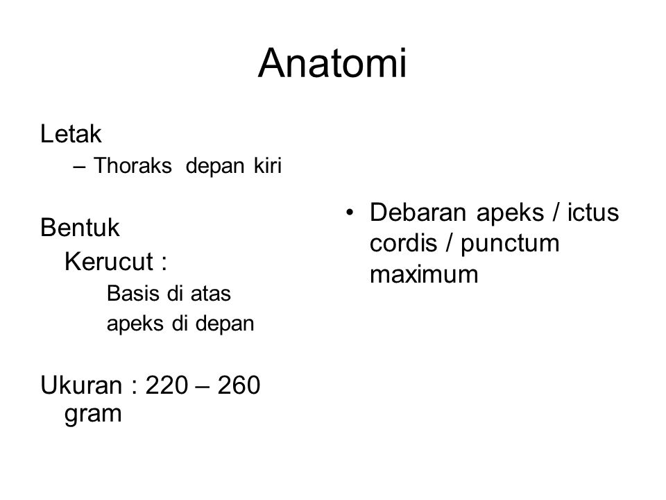 Anatomi Letak Debaran apeks / ictus cordis / punctum maximum Bentuk