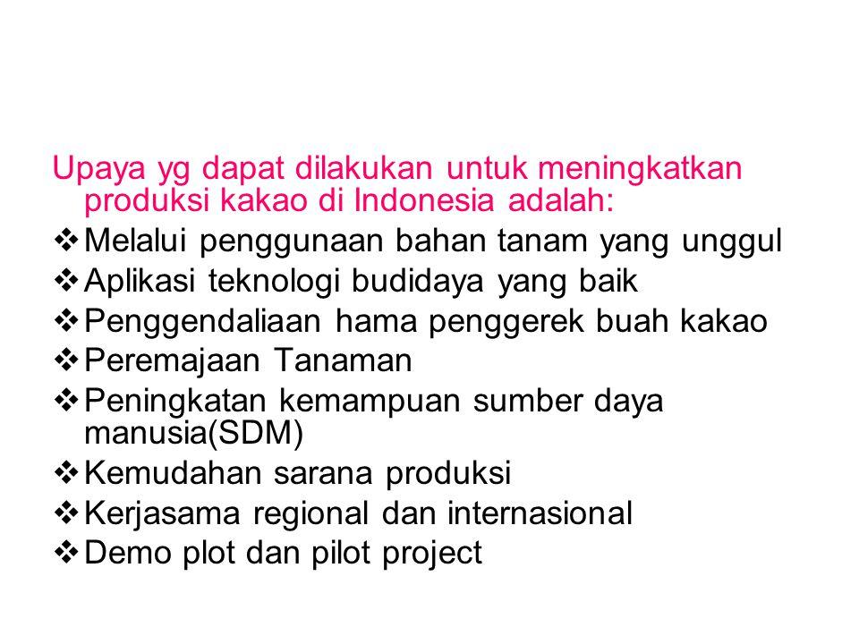 Upaya yg dapat dilakukan untuk meningkatkan produksi kakao di Indonesia adalah: