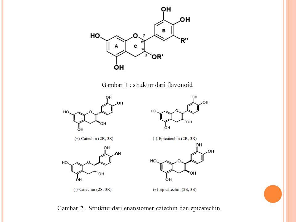 Gambar 1 : struktur dari flavonoid