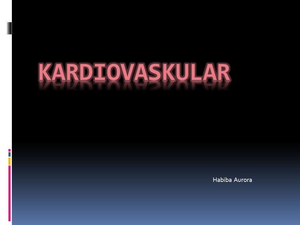 KARDIOVASKULAR Habiba Aurora
