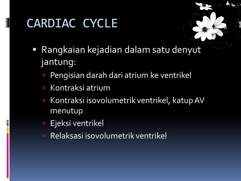 CARDIAC CYCLE Rangkaian kejadian dalam satu denyut jantung: