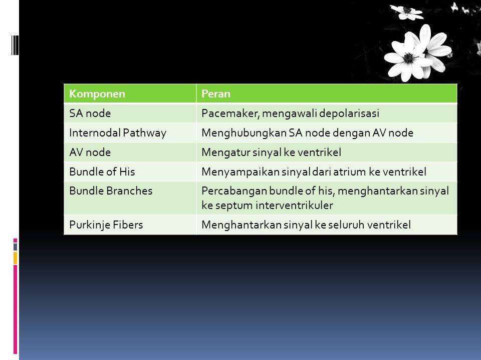 Komponen Peran. SA node. Pacemaker, mengawali depolarisasi. Internodal Pathway. Menghubungkan SA node dengan AV node.