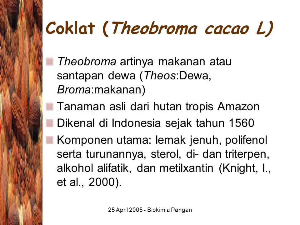 Coklat (Theobroma cacao L)