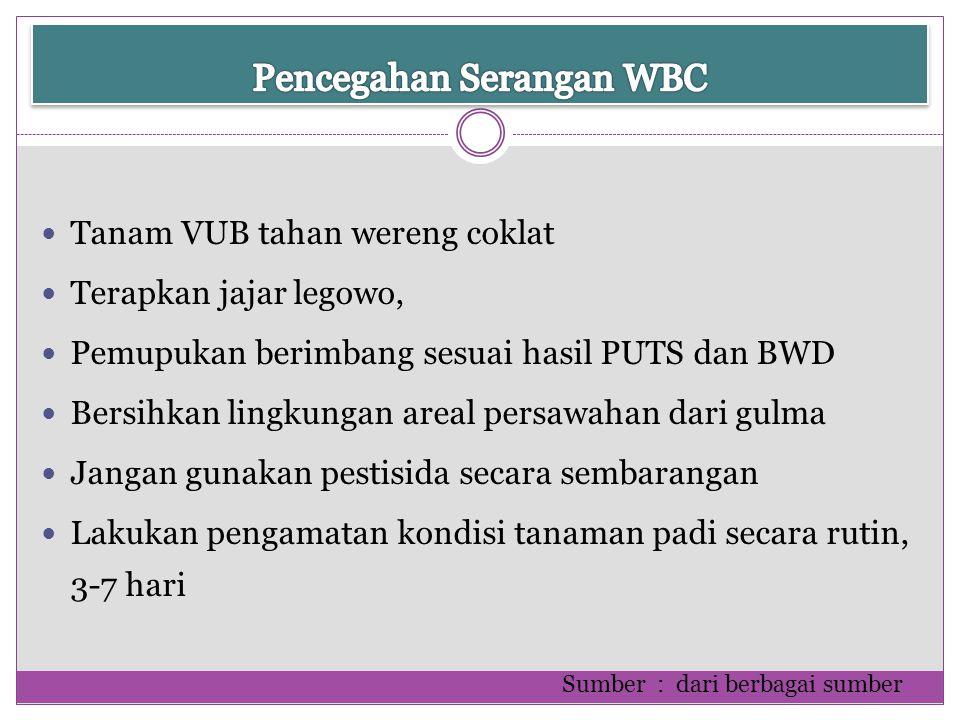 Pencegahan Serangan WBC