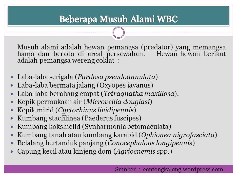 Beberapa Musuh Alami WBC