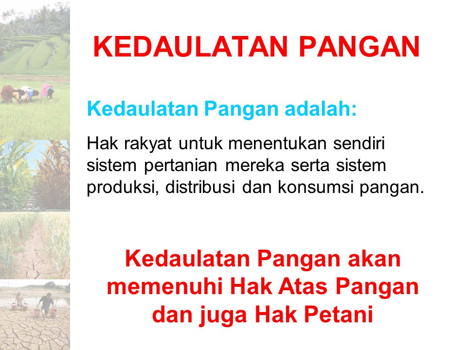 Kedaulatan Pangan akan memenuhi Hak Atas Pangan dan juga Hak Petani