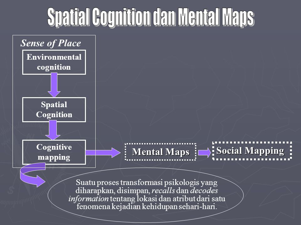 Environmental cognition