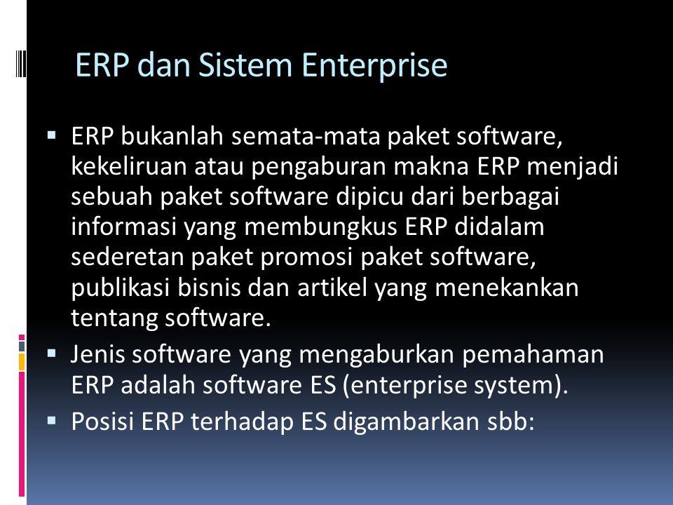ERP dan Sistem Enterprise