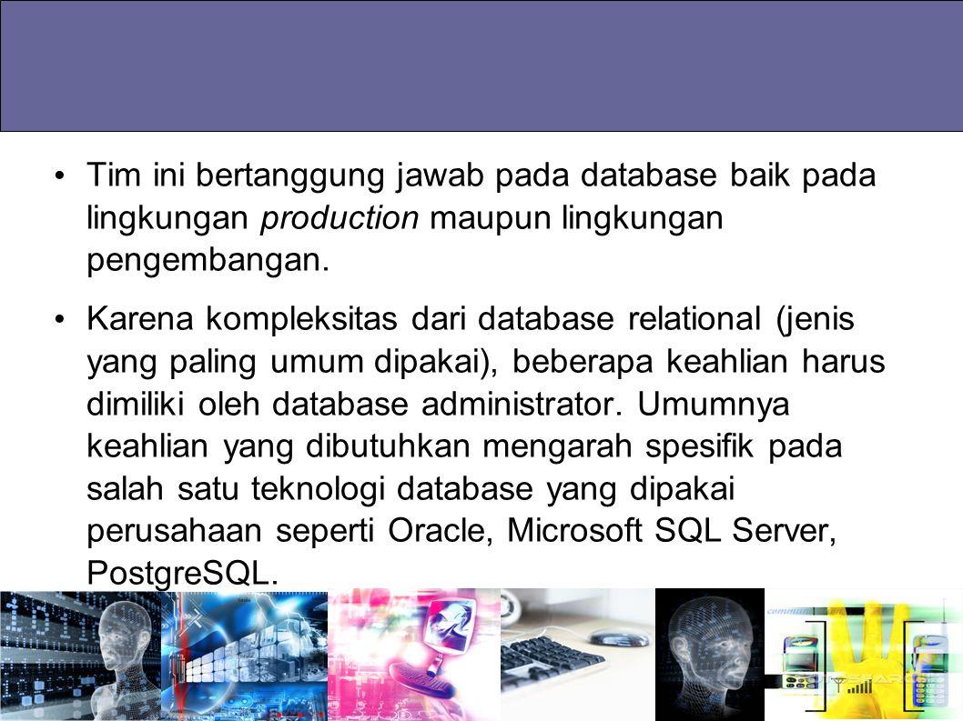 Tim ini bertanggung jawab pada database baik pada lingkungan production maupun lingkungan pengembangan.