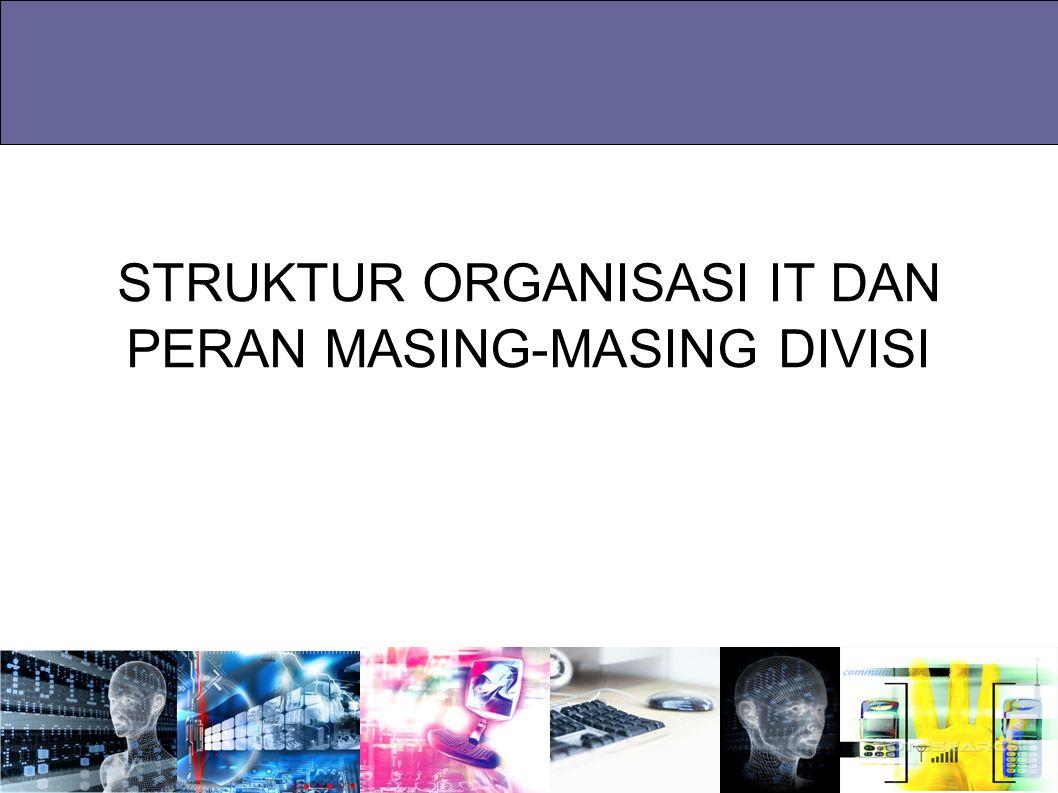 STRUKTUR ORGANISASI IT DAN PERAN MASING-MASING DIVISI