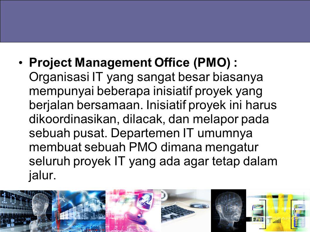 Project Management Office (PMO) : Organisasi IT yang sangat besar biasanya mempunyai beberapa inisiatif proyek yang berjalan bersamaan.