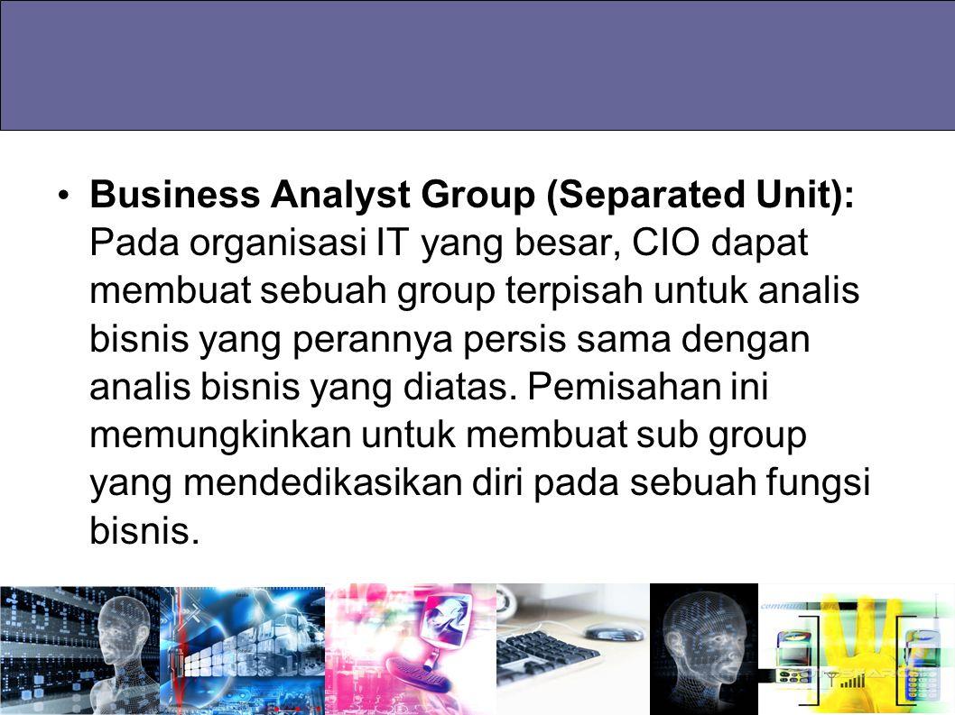 Business Analyst Group (Separated Unit): Pada organisasi IT yang besar, CIO dapat membuat sebuah group terpisah untuk analis bisnis yang perannya persis sama dengan analis bisnis yang diatas.