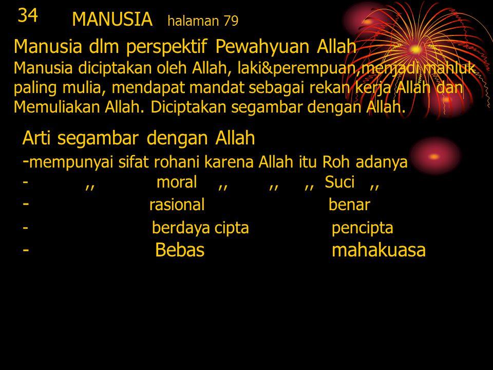 Manusia dlm perspektif Pewahyuan Allah