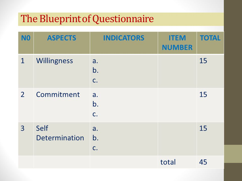 The Blueprint of Questionnaire