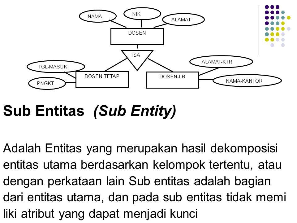 Sub Entitas (Sub Entity)