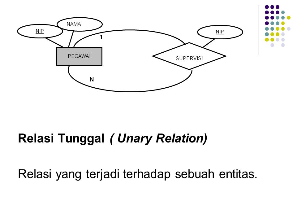 Relasi Tunggal ( Unary Relation)