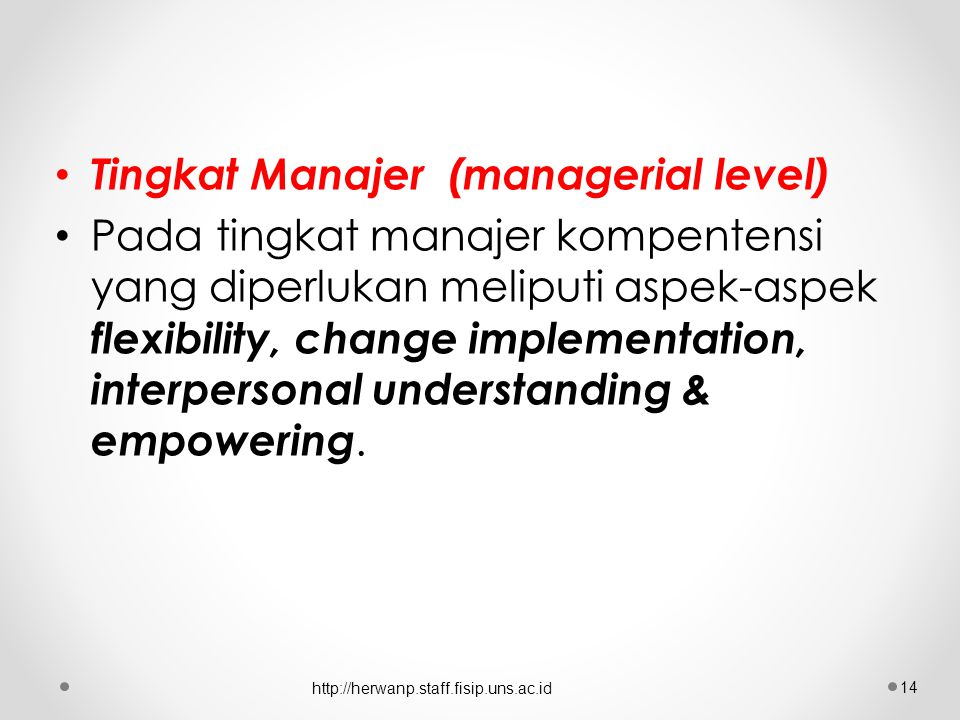 Tingkat Manajer (managerial level)