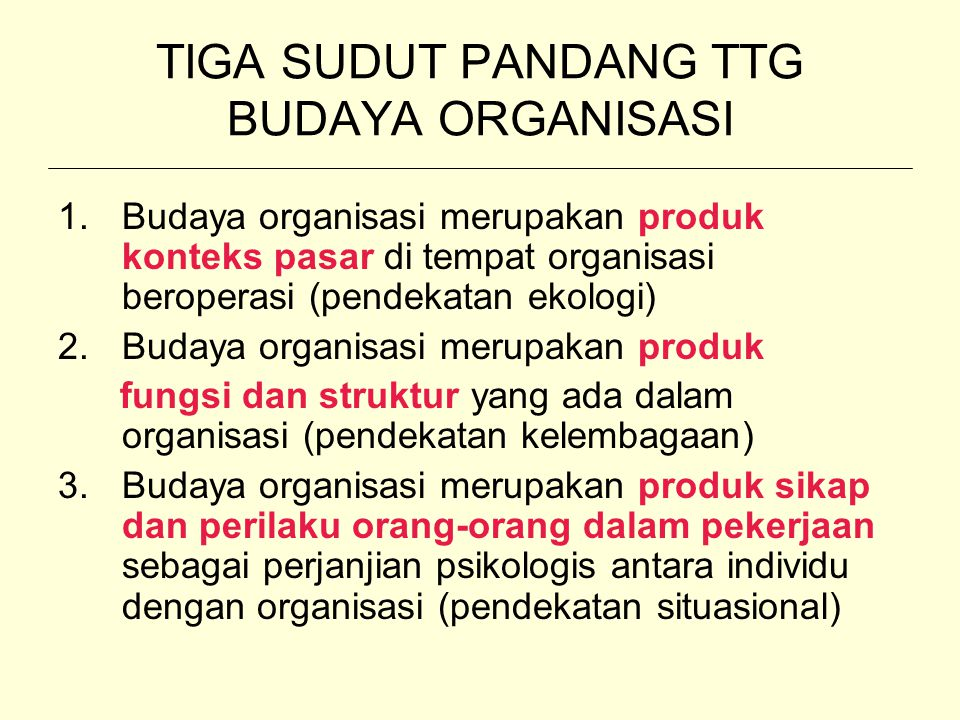 TIGA SUDUT PANDANG TTG BUDAYA ORGANISASI