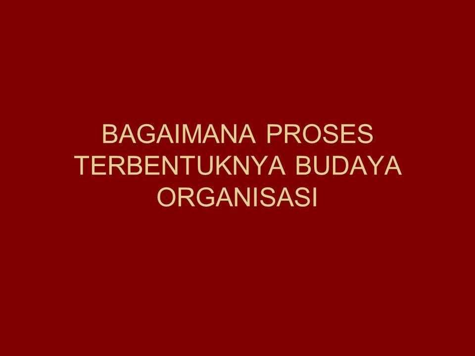 BAGAIMANA PROSES TERBENTUKNYA BUDAYA ORGANISASI