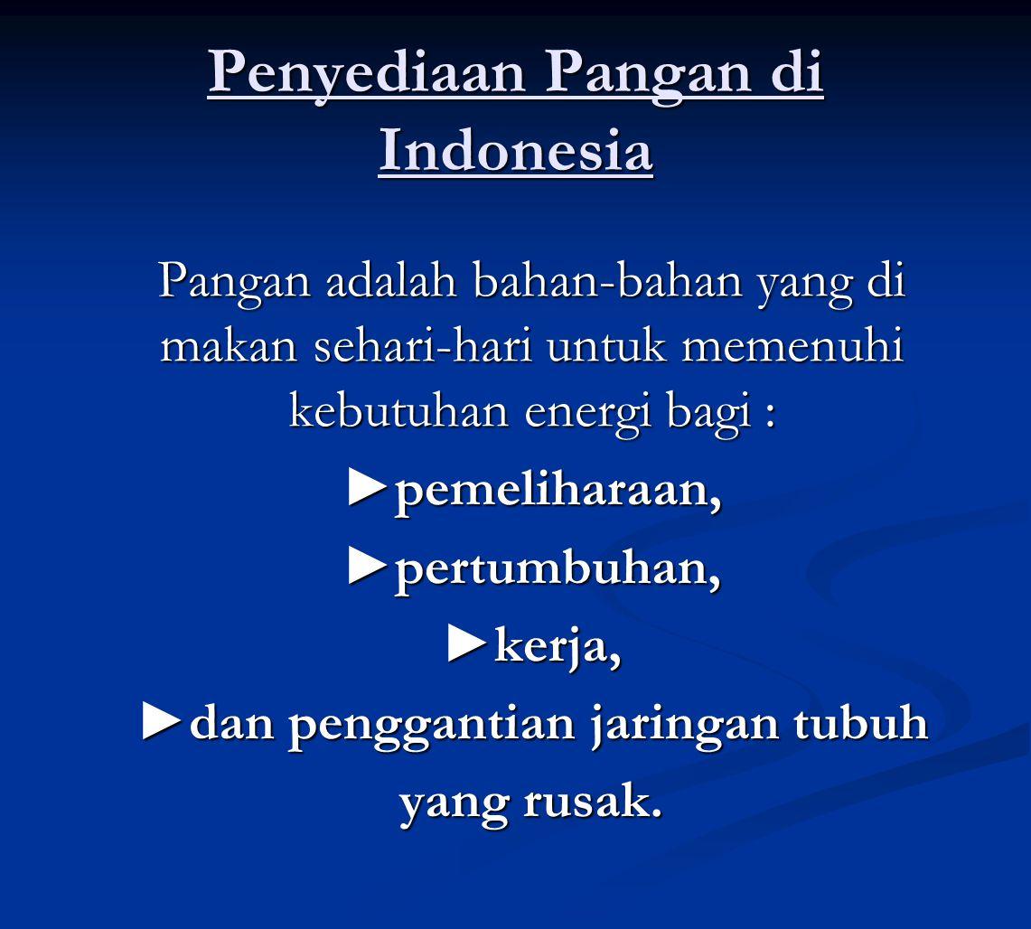 Penyediaan Pangan di Indonesia