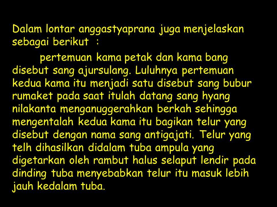 Dalam lontar anggastyaprana juga menjelaskan sebagai berikut :