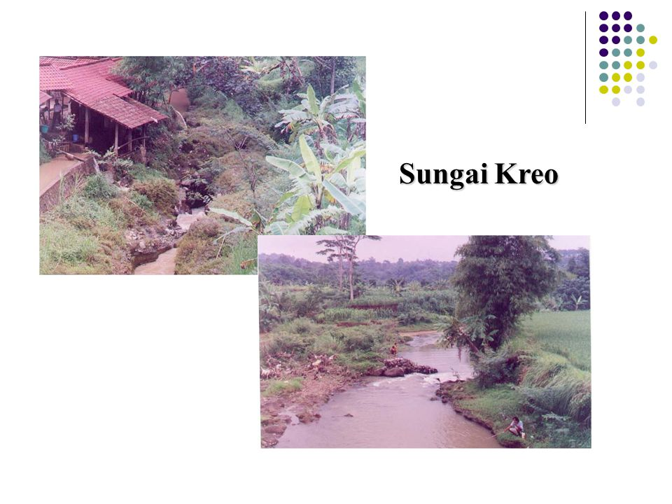 Sungai Kreo