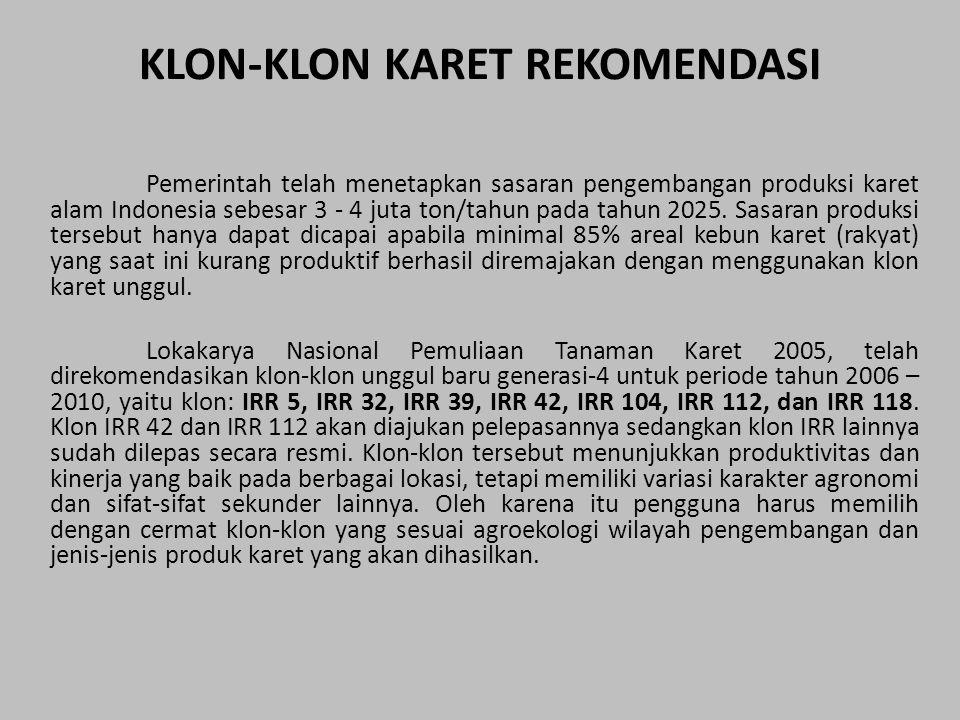 KLON-KLON KARET REKOMENDASI