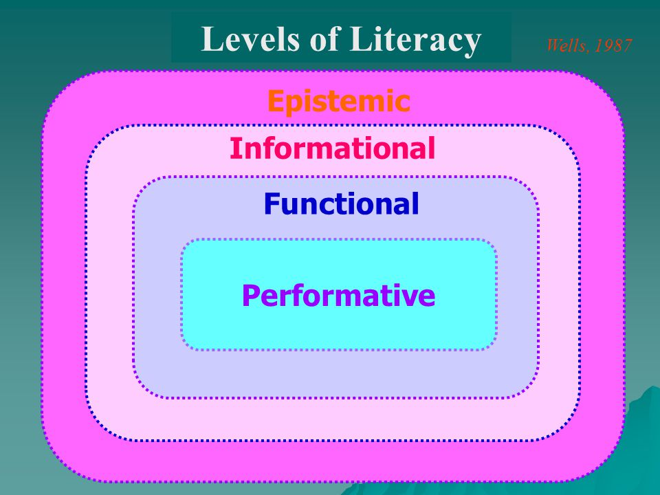 Levels of Literacy Epistemic Informational Functional Performative