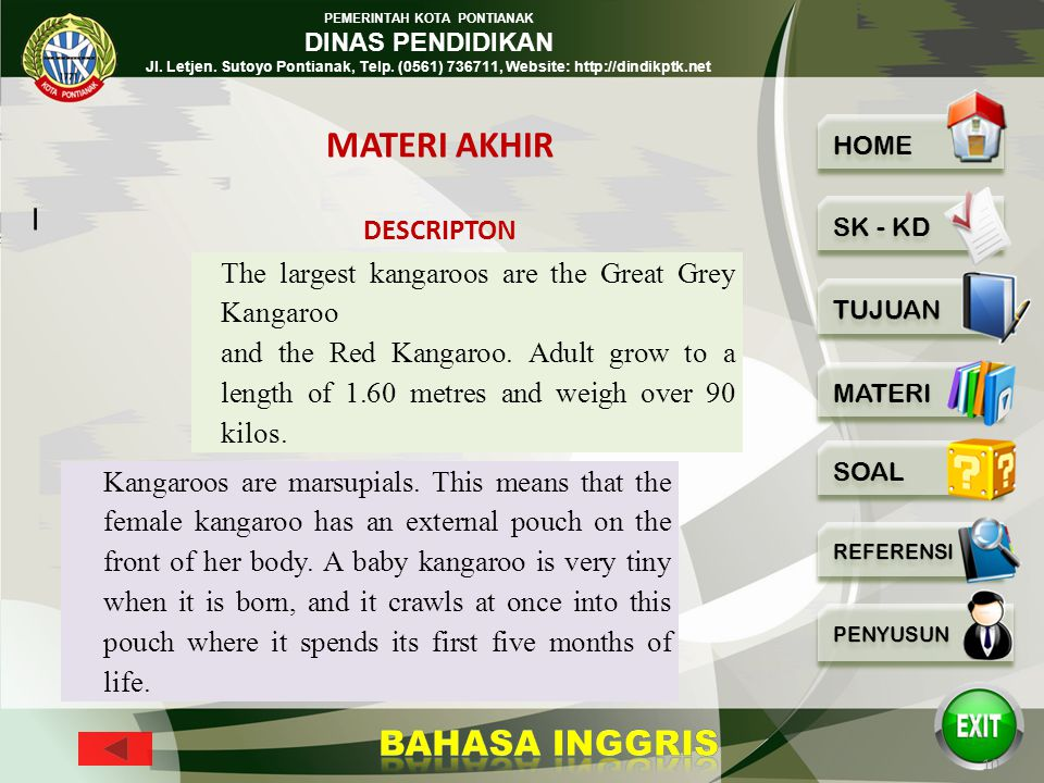 MATERI AKHIR I The largest kangaroos are the Great Grey Kangaroo