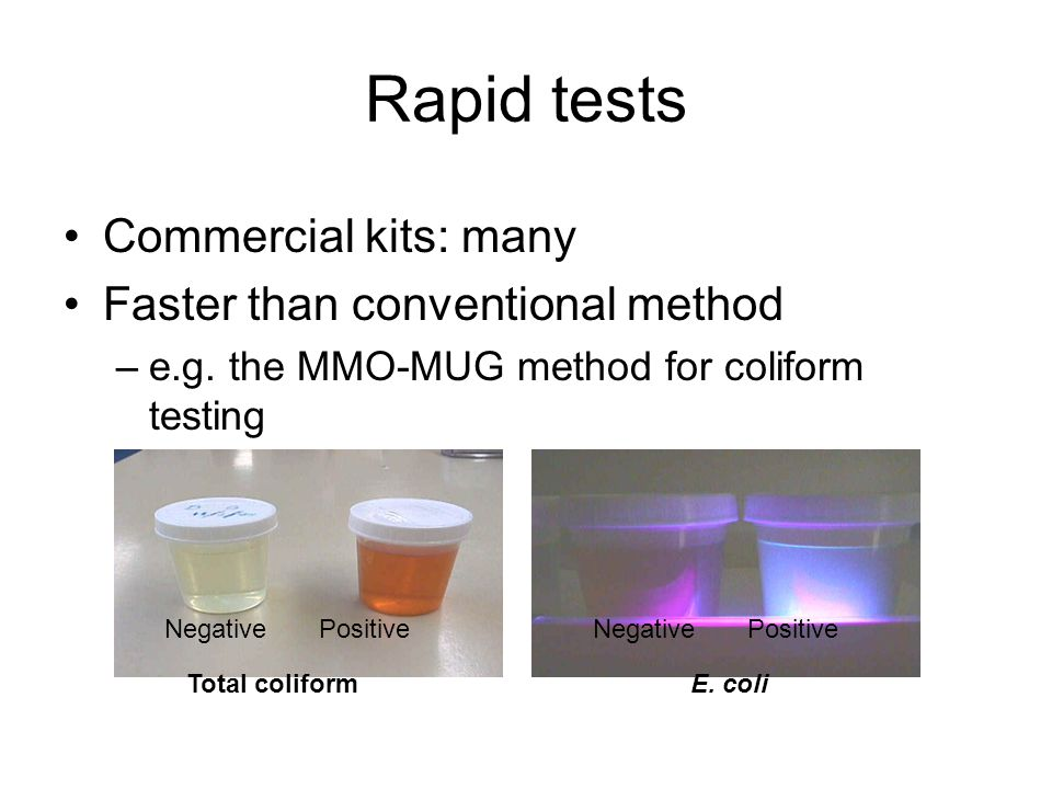 Rapid tests Commercial kits: many Faster than conventional method